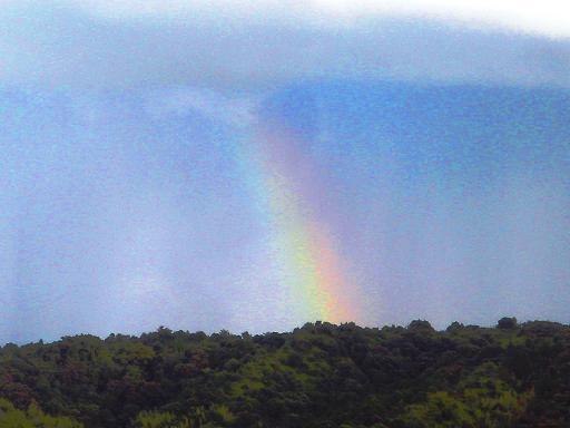 確かに虹だ.JPG