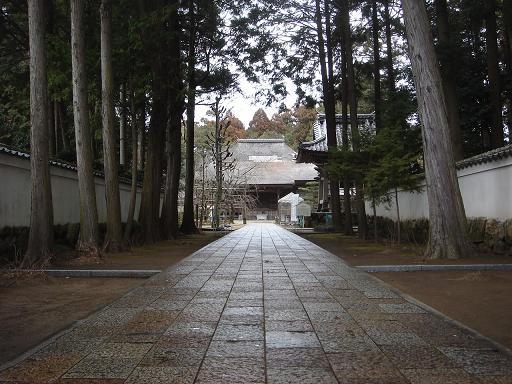 29番国分寺山門から.JPG