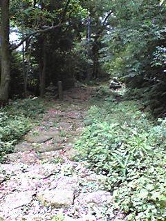 Image288.jpg