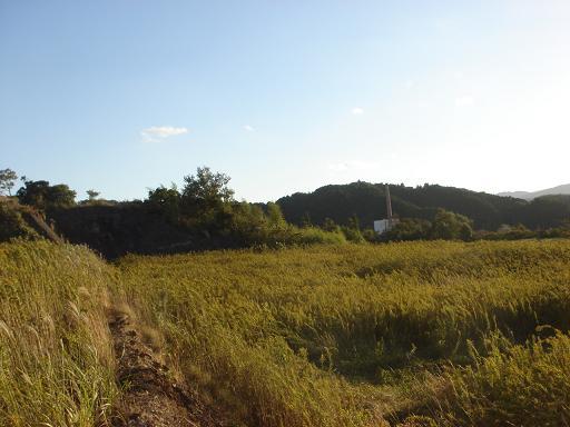 広大な土地2.JPG
