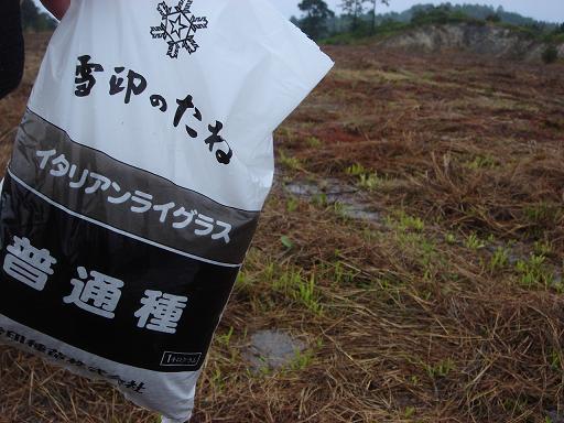 雪印の種.JPG