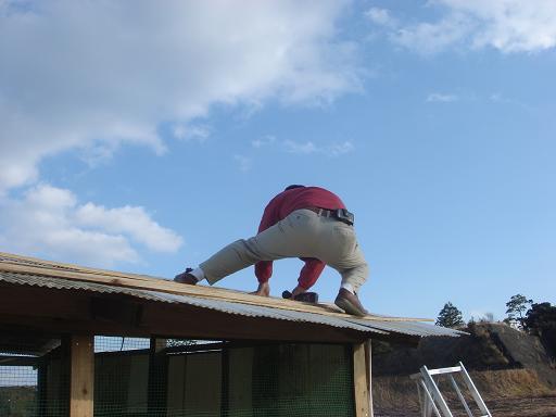 屋根に登るウルトラマン.JPG