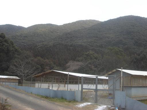 三原村の自然.JPG