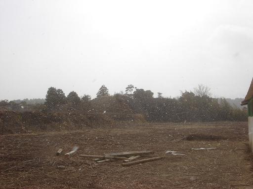 雪が.JPG
