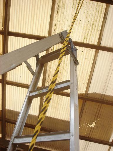 天井から吊るして.JPG