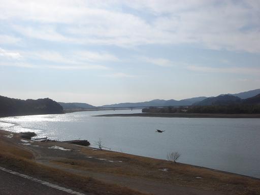 四万十川とトンビ.JPG