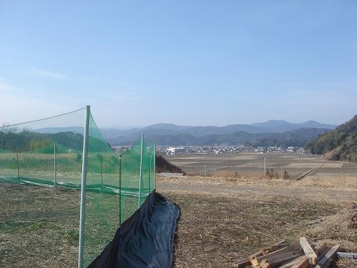 暖かい日差し.JPG