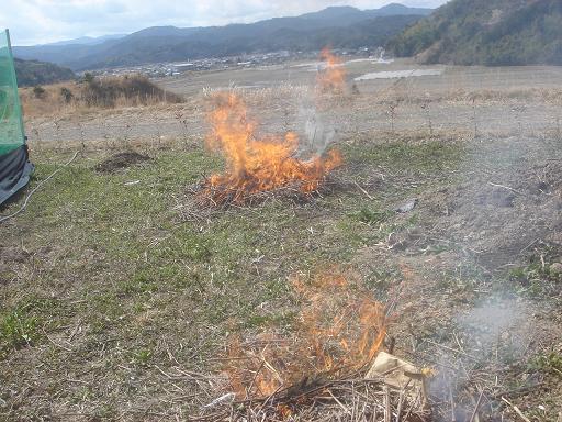 枯草を燃す.JPG