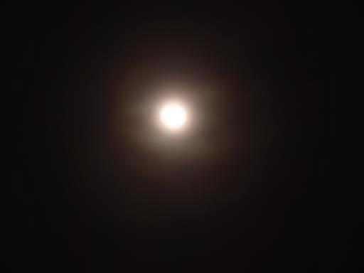 おぼろ月夜.JPG