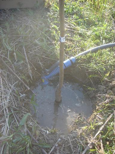 水をたっぷり.JPG