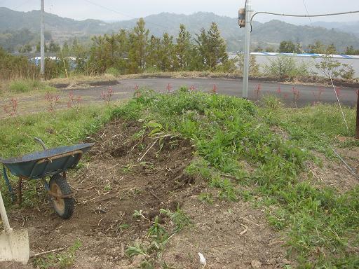 堆肥の山を削って.JPG