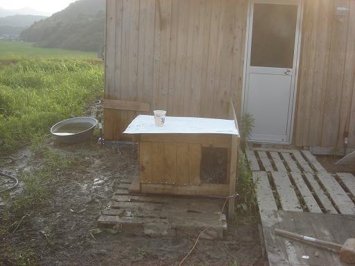新犬小屋.JPG