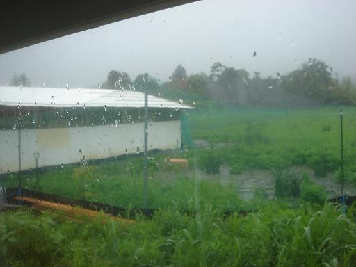 雷と雨.JPG