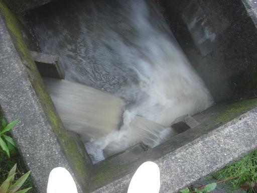 排水溝.JPG