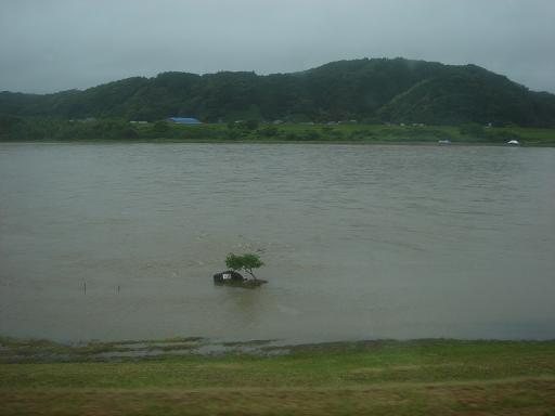 増水した四万十川.JPG