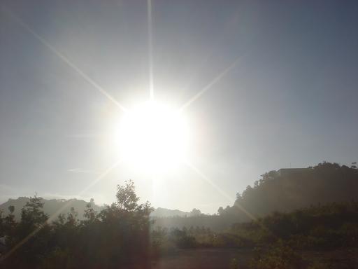 霞の朝.JPG