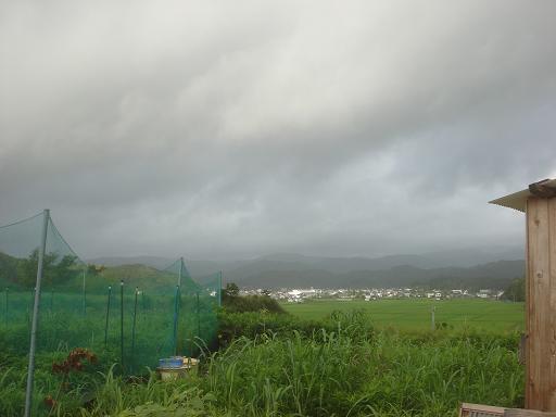 曇りと雨の朝.JPG