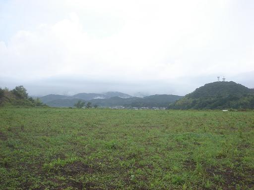 雨がち.JPG