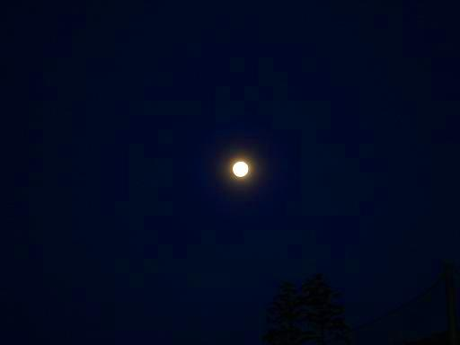 満月2.JPG