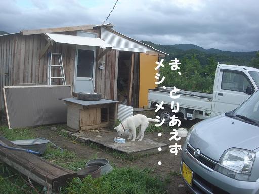 台風一過の朝2.JPG