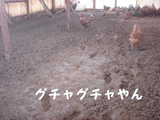 泥だらけ.JPG