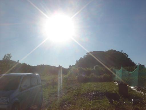 過激な太陽.JPG