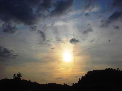 薄曇りの朝.JPG