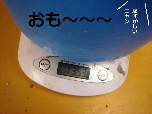 1353.JPG