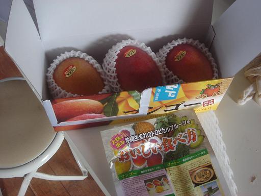沖縄産マンゴー.JPG
