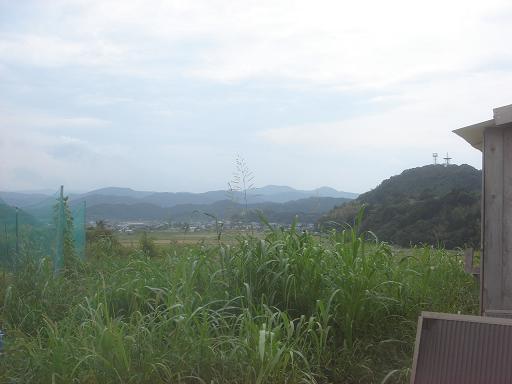 草刈り前.JPG