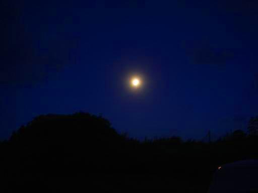 満月(前日).JPG