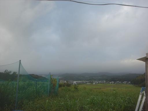 19日の朝.JPG
