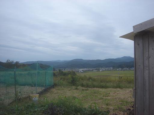 3日朝.JPG