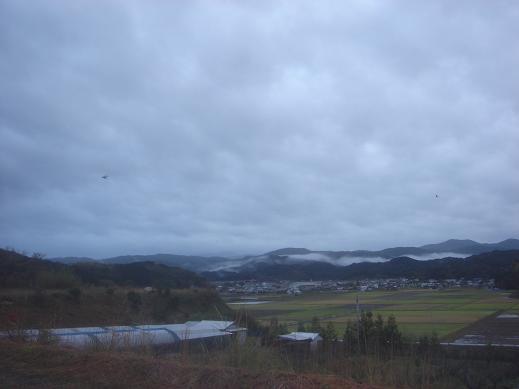 曇りの朝.JPG