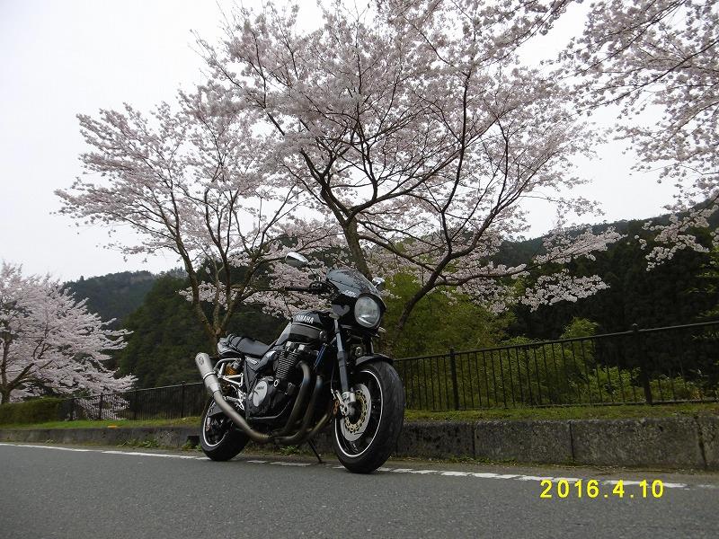 P1070124.jpg