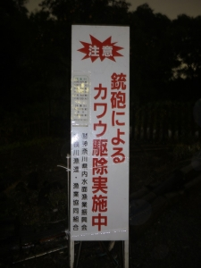 P1040393.jpg
