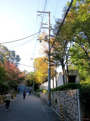 目神山1411