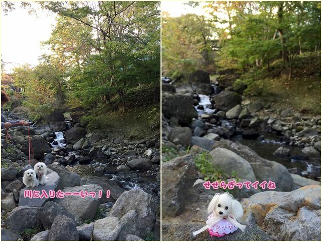 20141017-6683r.jpg