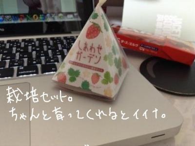 image_20130426223027.jpg