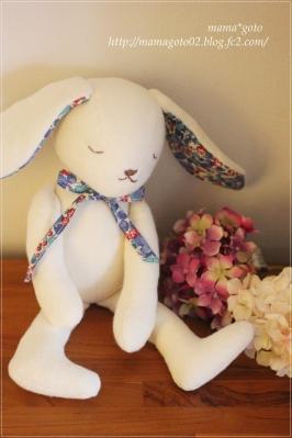Harutoウサギ