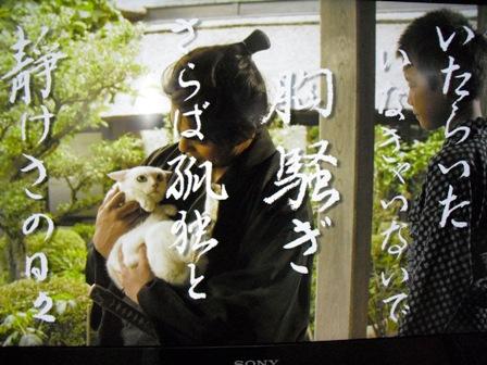 (ΦωΦ)侍3