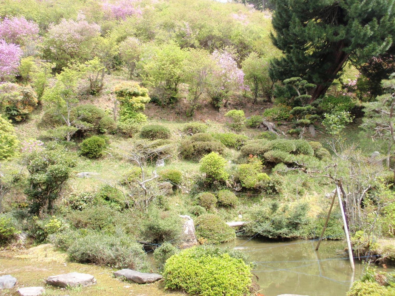蓮華寺・庭園
