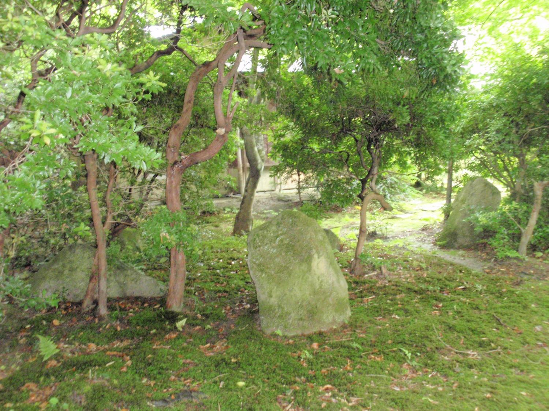 法明院・庭園