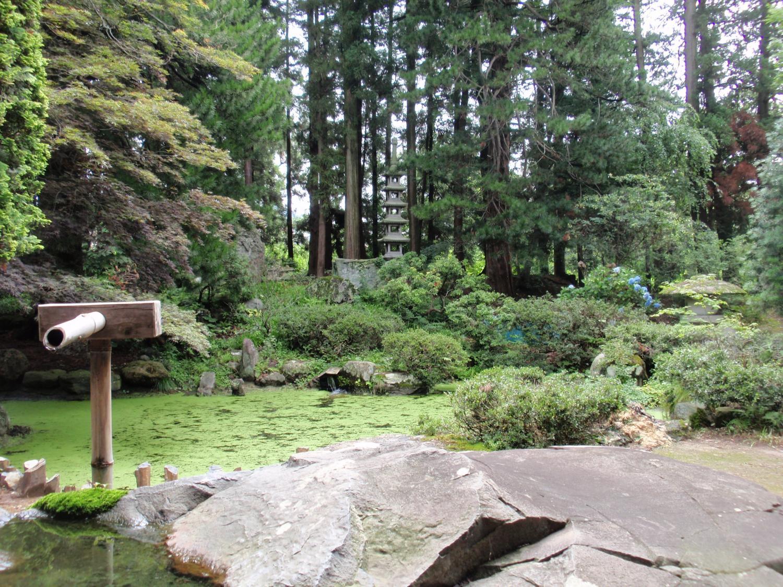 玄照寺・日本庭園