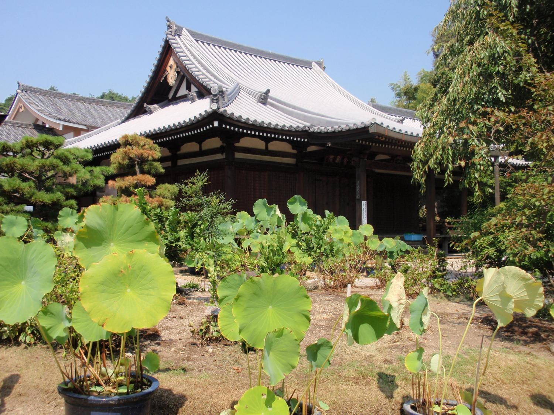 法金剛院・礼堂と仏殿