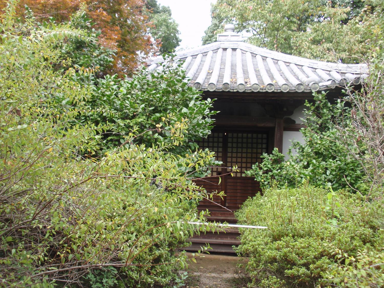 海龍王寺5