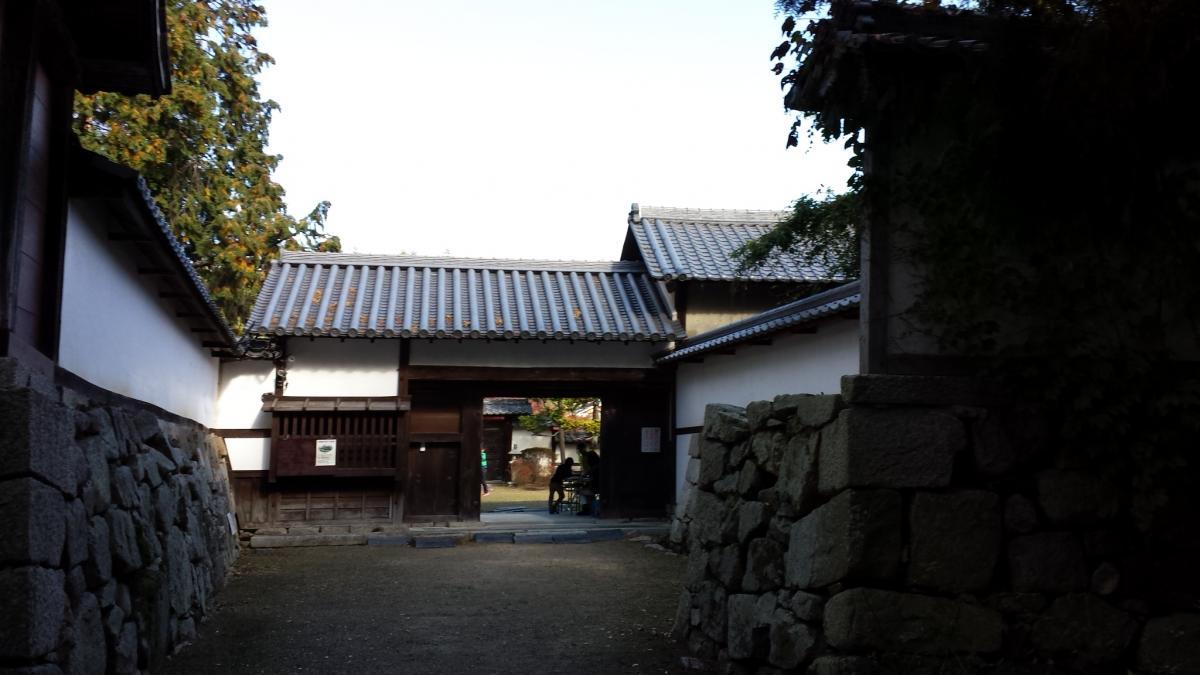 芦浦観音寺2