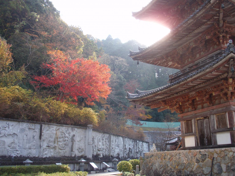 壺阪寺12
