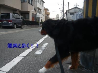 001+(2)_convert_20130726210206.jpg
