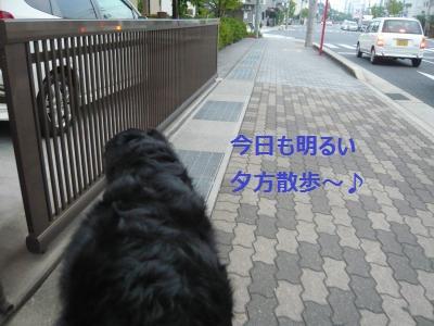 002+(2)_convert_20130726210236.jpg